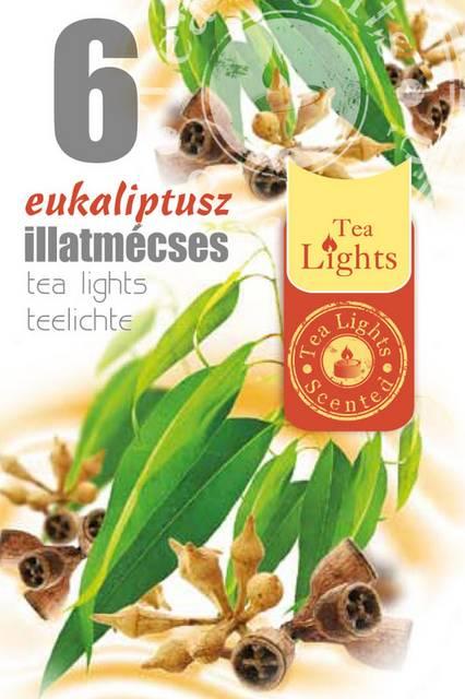 Illatos teamécses 6 db Eukaliptusz